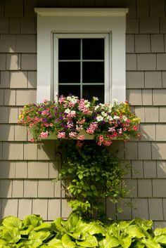 window trim/window box