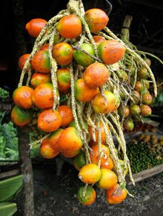 Peach Palm Fruit or Peewah.