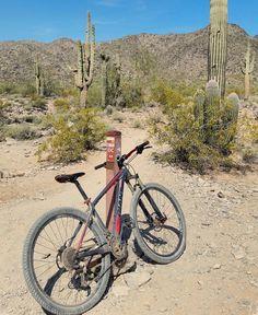 A classic ride in the desert. #desertclassic #southmountain #somo #sc #warpaint #29er #giantbicycles #giantxtc #hardtail #singletrack #mountainbiking #bikethatazup #getoutside #desertlife #instagramaz #exploreaz #az365 #azculture #rideabike #azcollective #mtb #azmtb #mtbr #lifeonthetrail #rideabike #phoenixaz #visitarizona by cw50must
