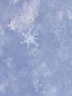 snowflakes7