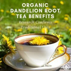 Organic dandelion root tea benefits include everything from improving lactation to killing aggressive cancer cells. It's been used for at least a couple thousand years in Chinese medicine. If you love herbal tea, make room for this one in your pantry. Uti Remedies, Herbal Remedies, Health Remedies, Dandelion Tea Benefits, Dandelion Root Tea, Herbal Medicine, Chinese Medicine, Thyme Herb, Spring Allergies