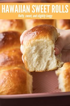 The fluffiest and most tender Hawaiian Sweet Rolls you'll ever try. They are simply the best! The fluffiest and most tender Hawaiian Sweet Rolls you'll ever try. They are simply the best! Best Bread Recipe, Bread Machine Hawaiian Bread Recipe, Best Rolls Recipe, Sweet Roll Dough Recipe, Hawaiin Bread, Sweet Yeast Rolls Recipe, Bread Machine Rolls, Homemade Yeast Rolls, Homemade Dinner Rolls
