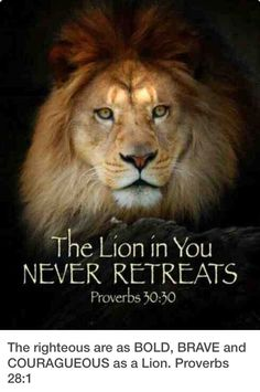 Lion Quotes, Bible Quotes, Quotes Quotes, Qoutes, Quotes With Lions, Jesus Quotes, True Quotes, Tattoo Quotes, Proverbs 30