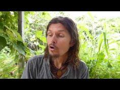 Diabète de type 1 , fruits et jus de légumes pour sortir du paradigme actuel ! - www.regenere.org - YouTube