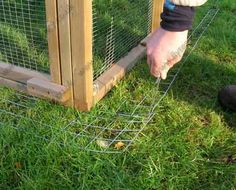 Anti Fox No-Dig Skirts for Chicken Runs | Chicken Houses and Runs
