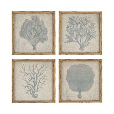 Get a calming touch of sea life with this set of four blue-grey prints, each depicting a different type of beautiful graceful coral on a natural linen background.