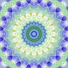 Claudia Burlager Digital-Art - Im Garten Mandala
