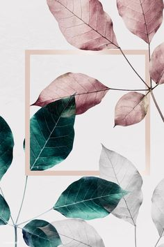 design wallpaper Pink and green leaves with pink square frame, iphone and mobile phone wallpaper Pink And Green Wallpaper, Rose Gold Wallpaper, Iphone Wallpaper Green, Leaves Wallpaper, Tapete Gold, Foto Poster, Pink Leaves, Rose Leaves, Wallpaper Backgrounds