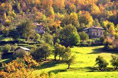 Sonbahar...Renk dönüşümü, rengarenk bir doğa...Küre Dağları Milli Parkı..  Batı Karadeniz Küre dağları milli parkı emin olun mevsim iyibarı ilene güzel yerlerin başında geliyor. Ülkemizin tek...