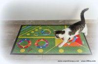 Elba, Kids Rugs, Cats, Home Decor, Gatos, Decoration Home, Kid Friendly Rugs, Room Decor, Cat