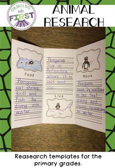 Animal Research Template Freebie  Writing