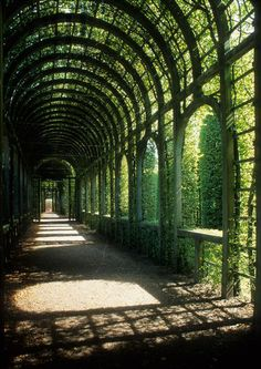tall wooden arches above path