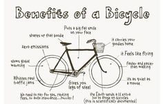 Reasons to ditch your car for a greener mode of transport!