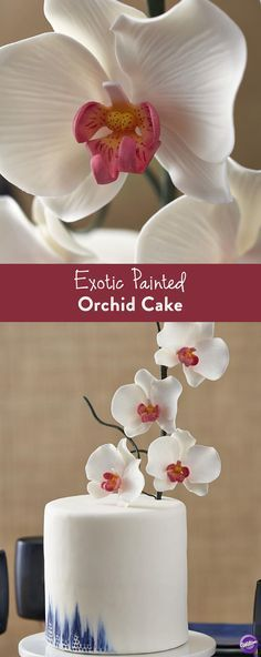 Exotic Painted Orchid Cake - Create a simple and stunning Exotic Painted Orchid Cake for your next celebration. White orchids signify innocence, elegance and beauty, making this cake ideal for a wedding or baby shower. A striking painted accent on the base of this cake helps add a fun pop of color.