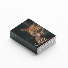 "Sarah Matzer on Instagram: ""Info folder CATZBOXX CATZ - we care for your cat. 🖊 ⠀ ⠀⠀⠀⠀ ⠀ ⠀⠀ ⠀⠀⠀⠀ ⠀⠀⠀⠀⠀⠀⠀ ⠀⠀⠀⠀ ⠀ ⠀⠀ ⠀⠀⠀⠀ #designmatzer #designer #designers  #creative…"" Designers, Cats, Creative, Instagram, Gatos, Cat, Kitty, Kitty Cats"
