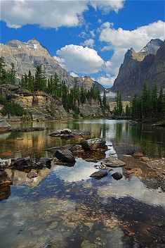 Opabin Reflection by Surreal McCoy (Alvin Brown) ~Yoho National Park, Canada*