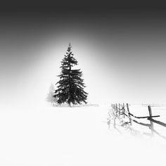 winter photograph, outdoor photography, behance, art, white, natur, black, vassili tangouli, photographi