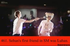 I'm going to spam with EXO facts sorry Mostly HunHan probably {Facts Credit to owner not mine!!!}
