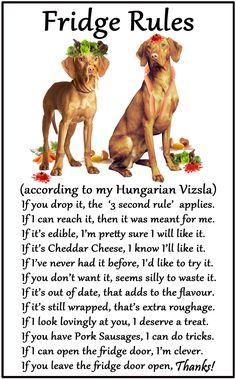 "Hungarian Vizsla - Humorous Magnetic Dog Fridge Rules. Size 6"" x 4"". Available from www.car-pets.co.uk and www.Amazon.co.uk"