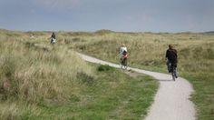 Rowerzyści na elektrycznych rowerach powinni nosić kaski #popolsku