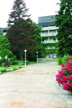 Hotel Lotos Park