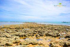 Fotos da Praia na Praia do Forte