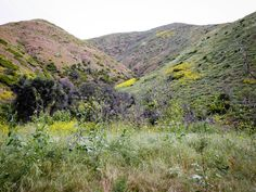 Big Sycamore Canyon Trail: Pt. Mugu State Park — escape from the bay