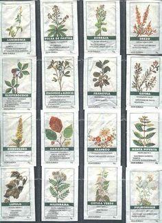 plantas medicinales -