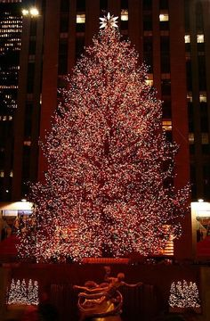 i have to go to nyc around christmas time some day
