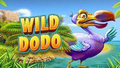 Useimmat verkkopelipelit odottavat sinua Frank kasinolla ilmaiseksi! Esimerkiksi Wild Dodo Casino Night, Casino Party, Casino Games, Nature Photography, Travel Photography, Free Slots, City, Summer, Fun