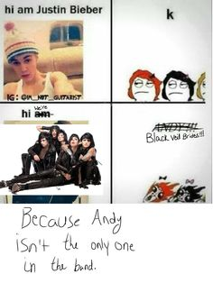 YES!!! No true BVB fan likes BVB just because of Andy, they love all the members equally! Andy for his coolness, Ashley for his awesomeness, Jake for his epicness, CC for his fabulousness, and Jinxx for his amazingness. I love each one of them equally for different reasons. BVB! <3