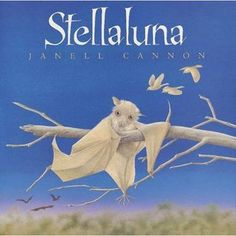 Stellaluna is a good book. Because well, I guess Stellaluna is a good book. Let me tell you some bat facts. Well, Stellaluna is also base. Books To Read, My Books, Story Books, Fall Books, Music Books, Baby Bats, Fruit Bat, Baby Fruit, Nocturnal Animals
