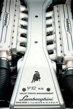 Lamborghini V12 engine - Yes, this is art!