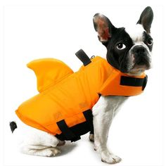 Pet Dog Swim Safety Life Jackets Buoyancy Shark Float Life Vest for Swimming TUE88 Dog Life Vest, Anti Aboiement, Cute Shark, Shark Fin, Dog Safety, Water Safety, Pet Life, Surf, Large Dogs