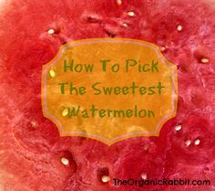 Here's how to pick the sweetest watermelon in the bunch. You'll never be disappointed by a skunky melon again. Delicious and juicy.  http://wp.me/p4iD6b-F9 www.theorganicrabbit.com