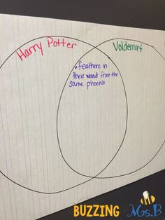 Buzzing with Ms. B: Potter Fans: Harry Potter Book Club Activities