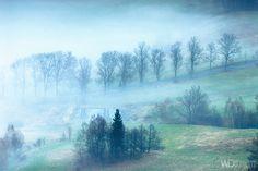Alley in the fog by WojciechDziadosz.deviantart.com on @DeviantArt