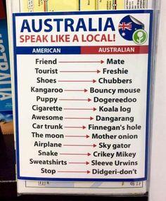 Obvious Plant Speak like an Aussie. Left in an Australia travel. Australian Party, Australian Memes, Aussie Memes, Australian Accent, Australian English, Australian Phrases, Australian Dictionary, Australian Icons, Australia Slang