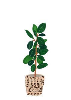 Botanical Print / Prayer Plant / Botanical Illustration / Home Decor / House Plants / Dorm Decor / Dorm Wall Art Plant Painting, Plant Drawing, Plant Art, Gouache Painting, Photoshop, Kate Pugsley, Illustration Blume, Dibujos Cute, Affinity Designer