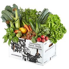 Looking for Lancaster Farm Fresh Cooperative Local Organic Vegetable Farm Share with Eggs and Cheese? Order from FreshDirect now for fast delivery. Organic Vegetables, Fruits And Veggies, Eat For Energy, Sheep Cheese, Vegetable Farming, Asparagus Soup, Bulk Food, Chicken Feed, Butter Recipe