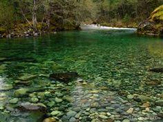 Salem, OR: Little North Santiam Trail | Hiking in Oregon