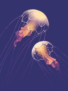 June - Lotus - A gallery-quality illustration art print by Heather Penn for sale. Art Inspo, Animal Drawings, Art Drawings, Bel Art, Character Art, Character Design, Jellyfish Art, Ouvrages D'art, Art Et Illustration
