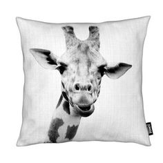 Print 41 - Lila x Lola - Coussin Art Mural, Freundlich, Moose Art, Material, Animals, Gadget, Sofa, Products, Slipcovers