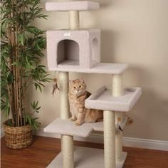 "Petco Premium Tree Bungalow for Cats, 19.7"" L X 28"" W X 55"" H by Petco, http://www.amazon.com/dp/B006K0FV7G/ref=cm_sw_r_pi_dp_HB1trb0YA6SQX"