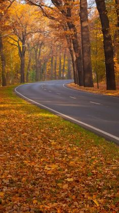 Beautiful Fall Day - perfect road for a drive Beautiful Places, Beautiful Pictures, Autumn Scenes, Seasons Of The Year, All Nature, Fall Pictures, Belle Photo, Beautiful Landscapes, Autumn Leaves