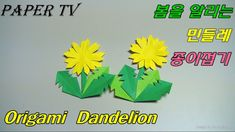 [Paper TV] Origami dandelion(flower) 민들레 종이접기 折り紙 タンポポ  como hacer Dient...