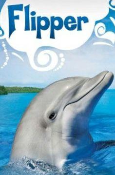 Flipper, serie de televisión