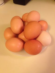 About Chicken Egg Washing and Storage