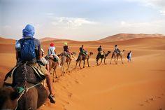 Η Τυνησία χώρα της Βόρειας Αφρικής με στρατηγική θέση που ενώνει τις ακτές της Μεσογείου με την έρημο Σαχάρα! 1st Night, Luxury Travel, Digital Illustration, Camel, Deserts, Animals, Illustrations, Animales, Animaux