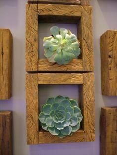 Nichos de madeira, outra solução para jardim vertical, só que dessa vez como opção de decoração interna. http://estilonobre.lojaintegrada.com.br/produto/madeira-demolicao-nicho-quadrado.html